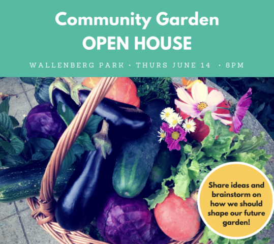 Community Garden Brainstorming